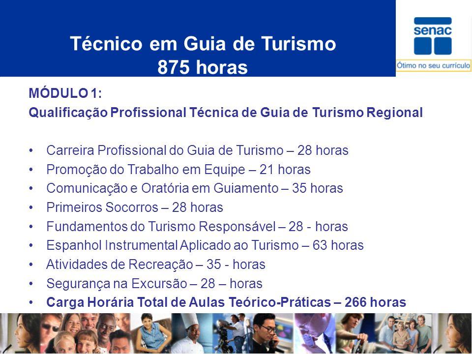 Técnico em Guia de Turismo 875 horas MÓDULO 1: Qualificação Profissional Técnica de Guia de Turismo Regional Carreira Profissional do Guia de Turismo