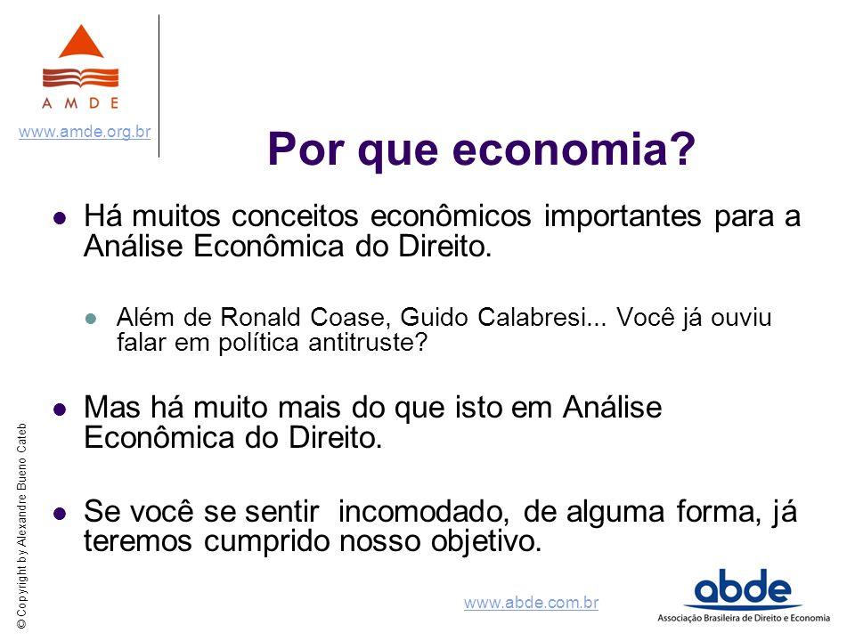 © Copyright by Alexandre Bueno Cateb www.amde.org.br www.abde.com.br Por que economia? Há muitos conceitos econômicos importantes para a Análise Econô