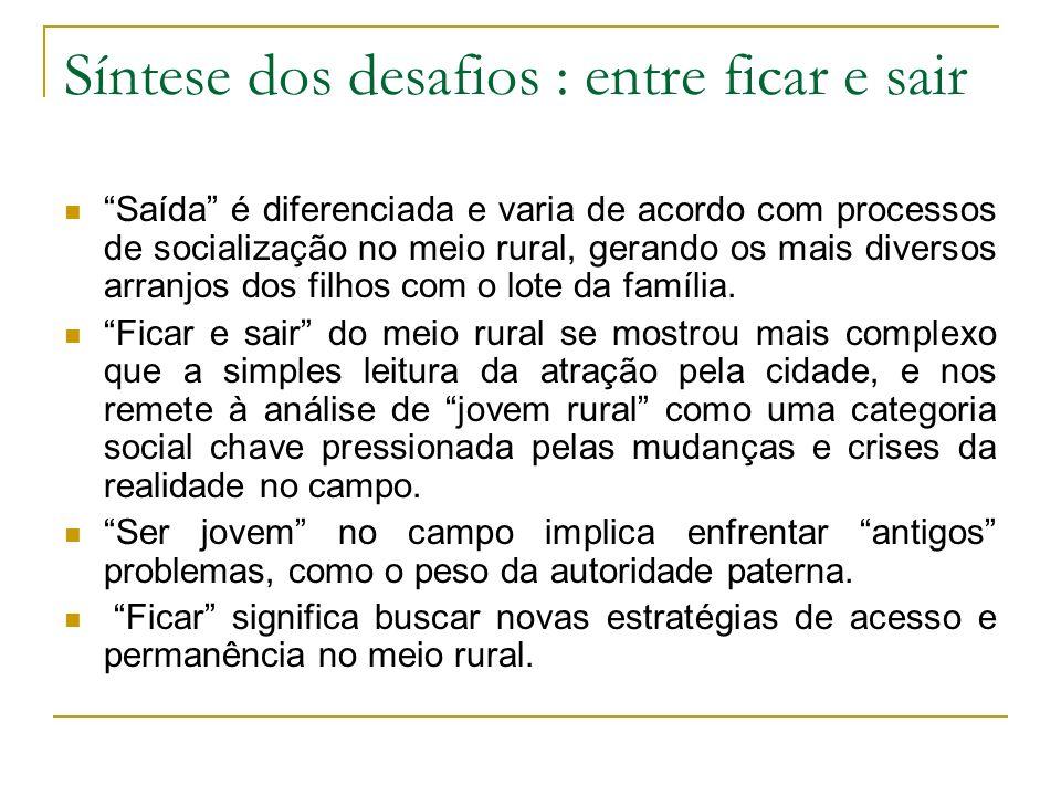 Síntese dos desafios : entre ficar e sair Saída é diferenciada e varia de acordo com processos de socialização no meio rural, gerando os mais diversos
