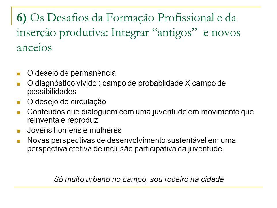 6) Os Desafios da Formação Profissional e da inserção produtiva: Integrar antigos e novos anceios O desejo de permanência O diagnóstico vivido : campo