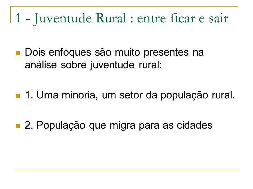 1 - Juventude Rural : entre ficar e sair Dois enfoques são muito presentes na análise sobre juventude rural: 1. Uma minoria, um setor da população rur