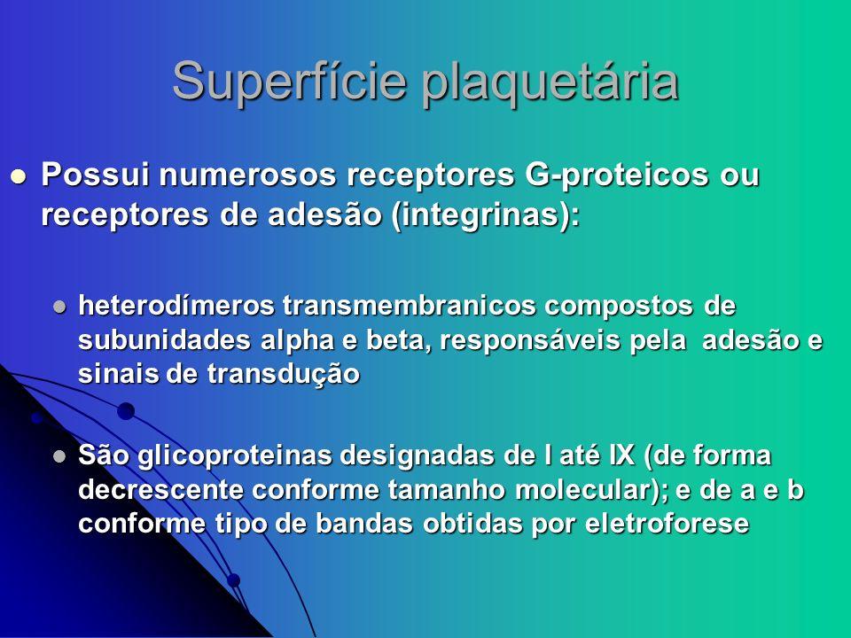 Superfície plaquetária Possui numerosos receptores G-proteicos ou receptores de adesão (integrinas): Possui numerosos receptores G-proteicos ou recept