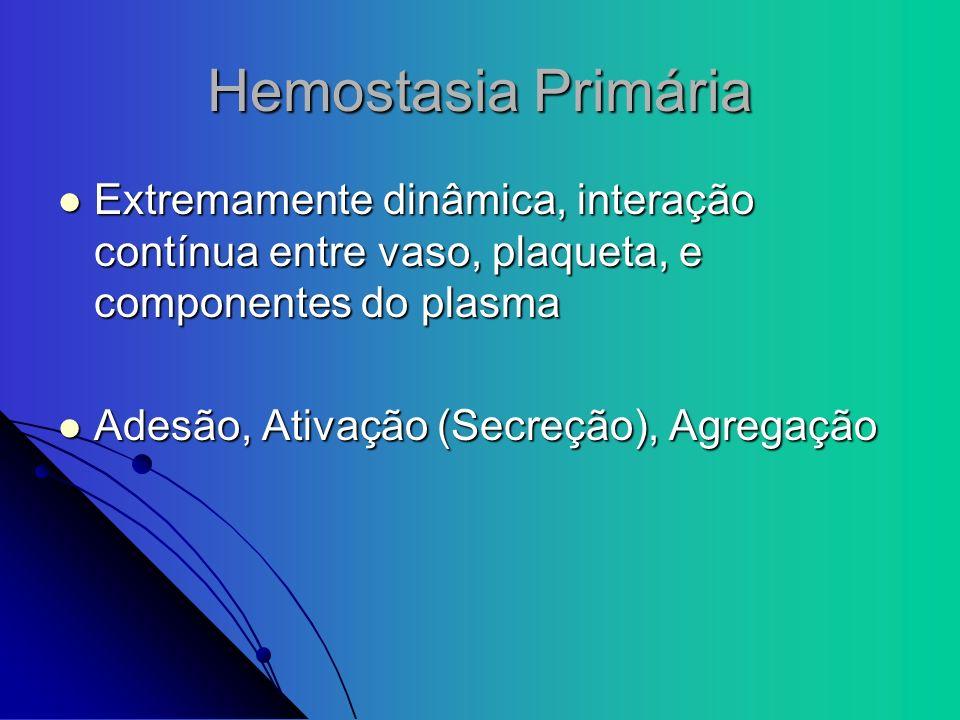 Hemostasia Primária Extremamente dinâmica, interação contínua entre vaso, plaqueta, e componentes do plasma Extremamente dinâmica, interação contínua