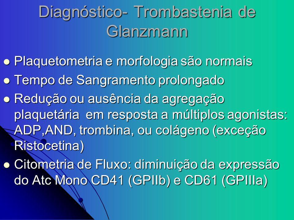 Diagnóstico- Trombastenia de Glanzmann Plaquetometria e morfologia são normais Plaquetometria e morfologia são normais Tempo de Sangramento prolongado