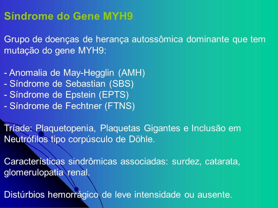 Síndrome do Gene MYH9 Grupo de doenças de herança autossômica dominante que tem mutação do gene MYH9: - Anomalia de May-Hegglin (AMH) - Síndrome de Se