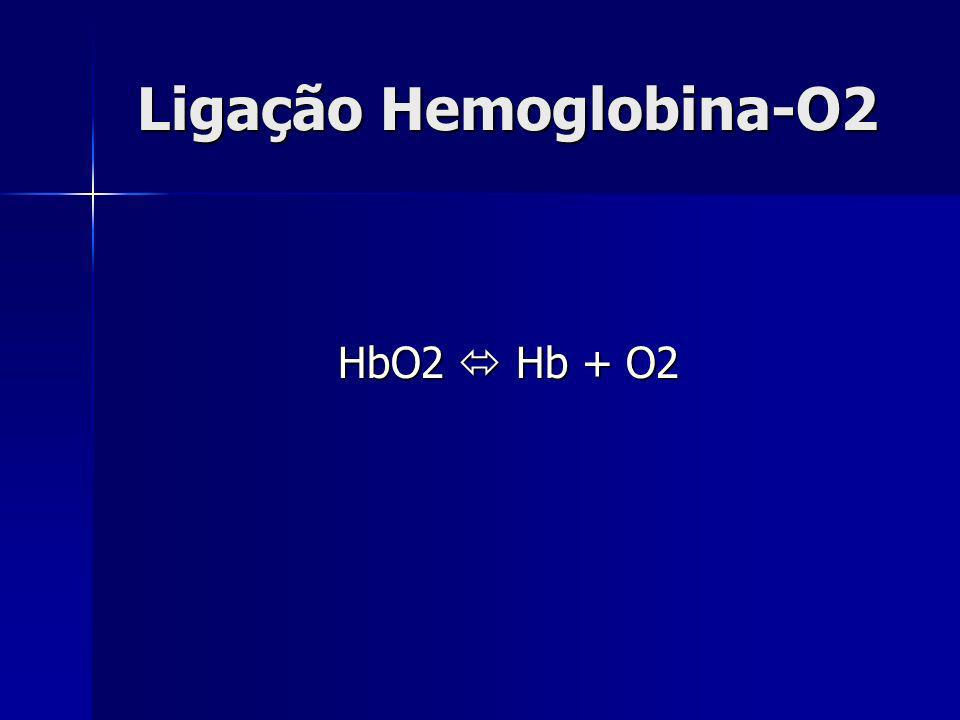 Ligação Hemoglobina-O2 HbO2 Hb + O2