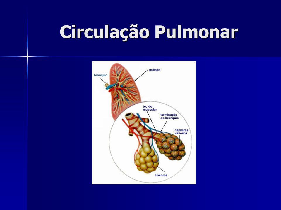 Zona Respiratória: Hematose