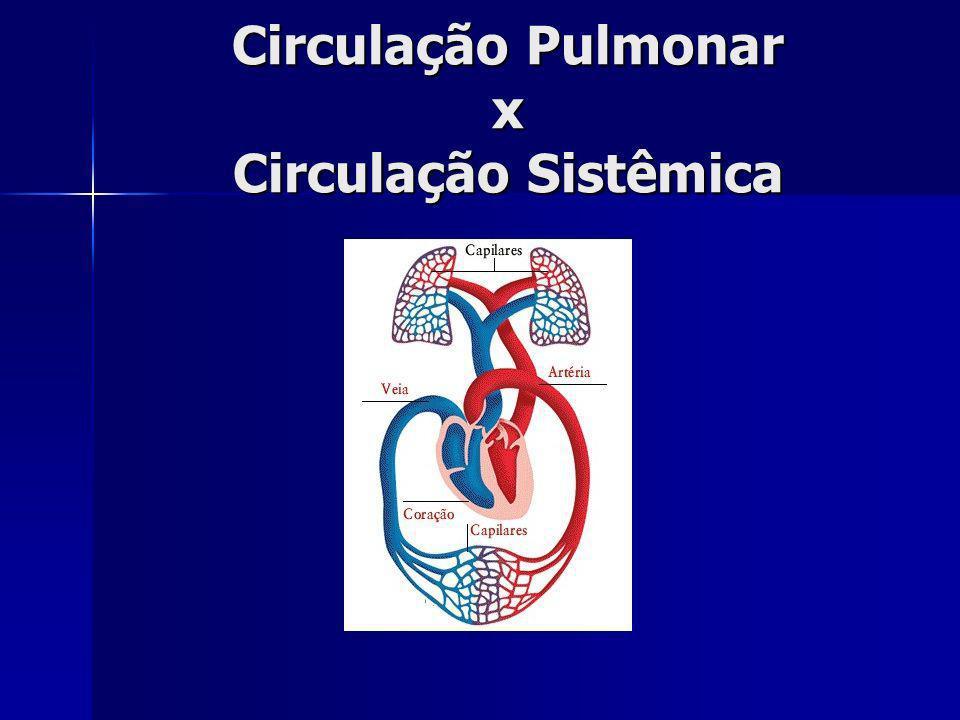 ramos arteriais pulmonares X sistêmicos - têm paredes mais finas - são mais curtos - têm maior diâmetro