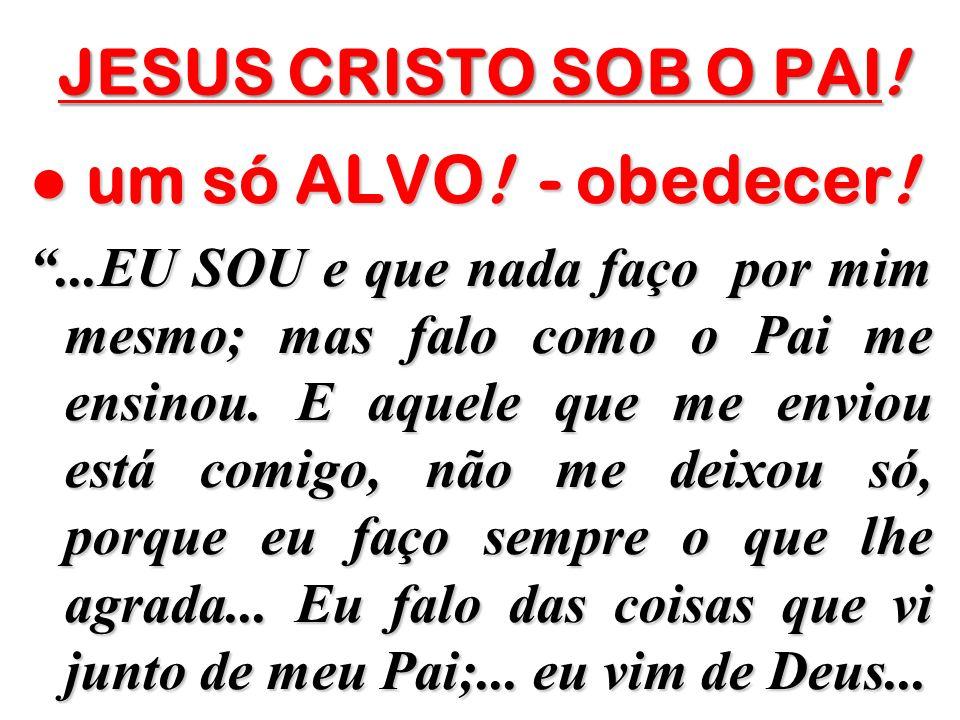 JESUS CRISTO SOB O PAI! um só ALVO! - obedecer! um só ALVO! - obedecer!...EU SOU e que nada faço por mim mesmo; mas falo como o Pai me ensinou. E aque