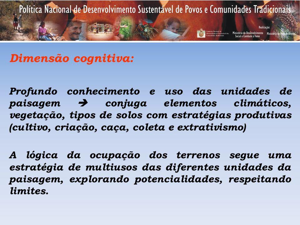 Dimensão cognitiva: Profundo conhecimento e uso das unidades de paisagem conjuga elementos climáticos, vegetação, tipos de solos com estratégias produ