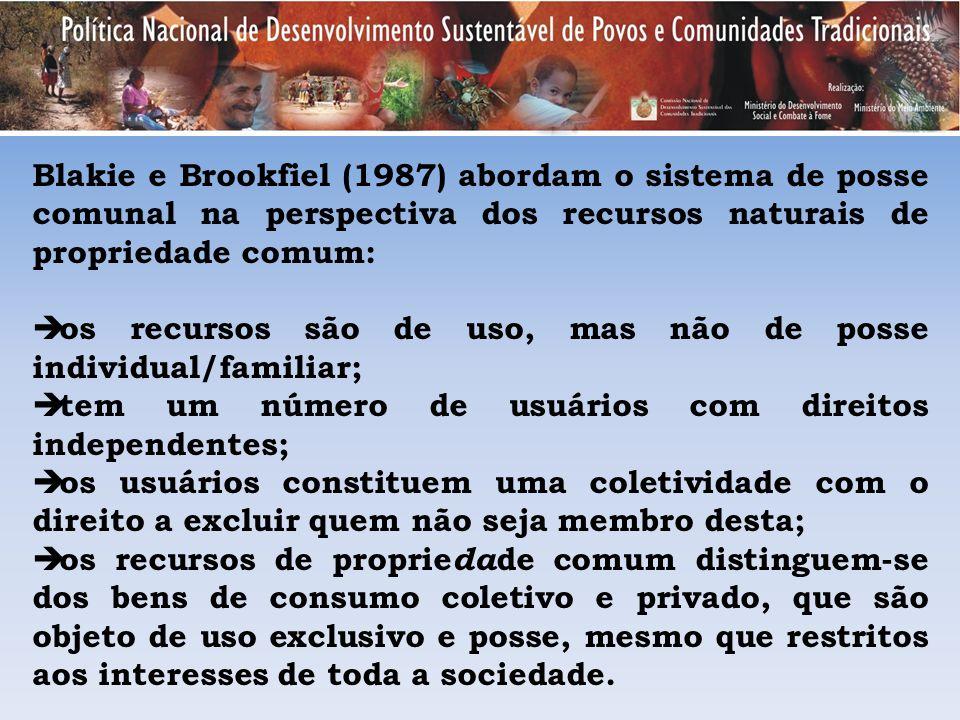 Blakie e Brookfiel (1987) abordam o sistema de posse comunal na perspectiva dos recursos naturais de propriedade comum: os recursos são de uso, mas nã