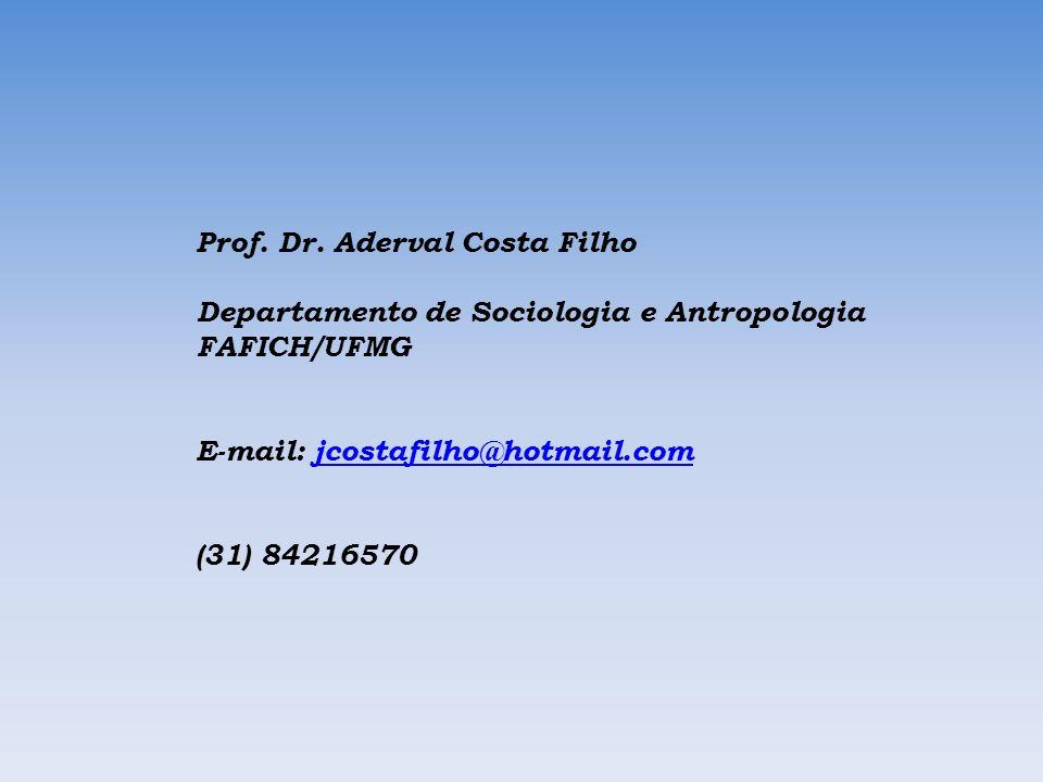 Prof. Dr. Aderval Costa Filho Departamento de Sociologia e Antropologia FAFICH/UFMG E-mail: jcostafilho@hotmail.comjcostafilho@hotmail.com (31) 842165