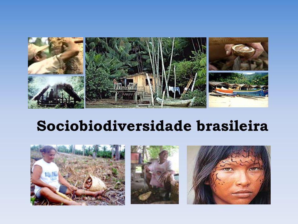 Sociodiversidade – Comunidades Tradicionais Povos Indígenas – 734.127 hab.