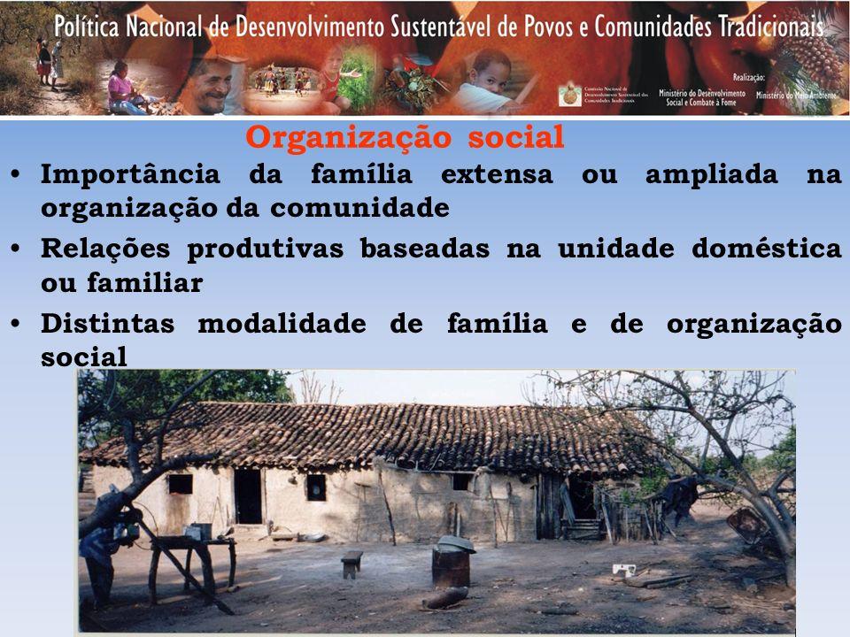 Organização social Importância da família extensa ou ampliada na organização da comunidade Relações produtivas baseadas na unidade doméstica ou famili
