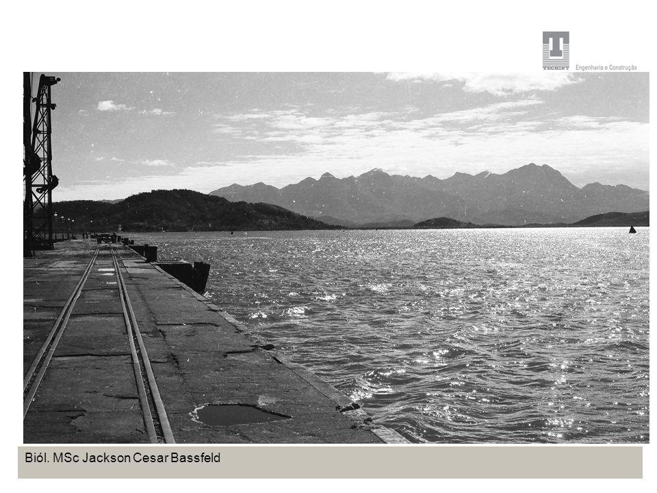 Projeto Base OffShore de Pontal do Paraná Coordenação de Meio Ambiente TEBRA I WORKSHOP PLANOS DE TRABALHO Biól. MSc Jackson Cesar Bassfeld