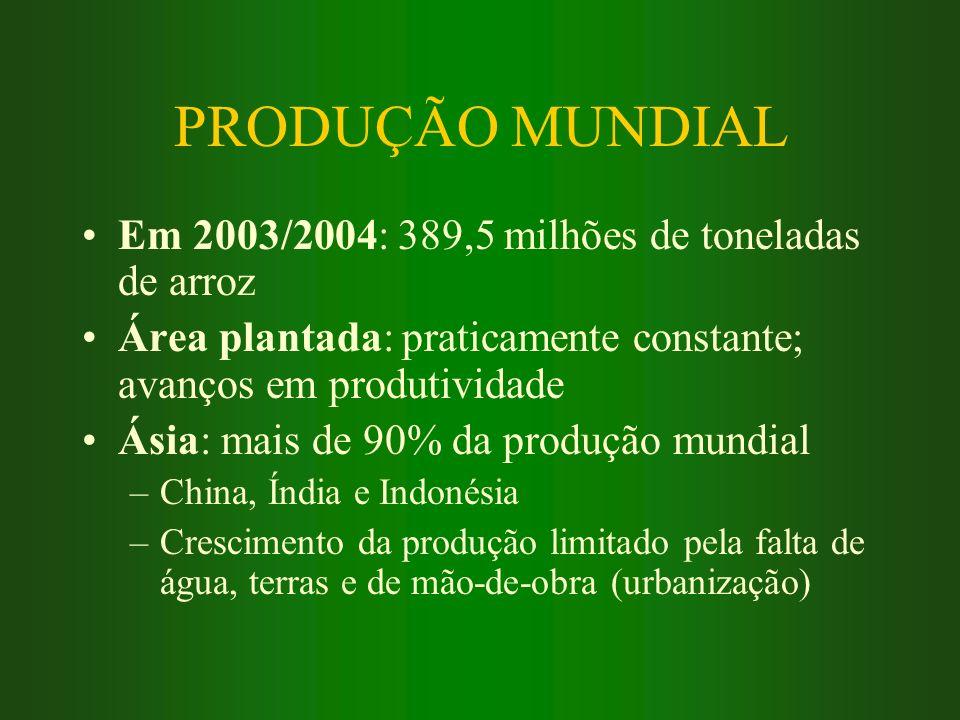 PRODUÇÃO MUNDIAL Em 2003/2004: 389,5 milhões de toneladas de arroz Área plantada: praticamente constante; avanços em produtividade Ásia: mais de 90% d