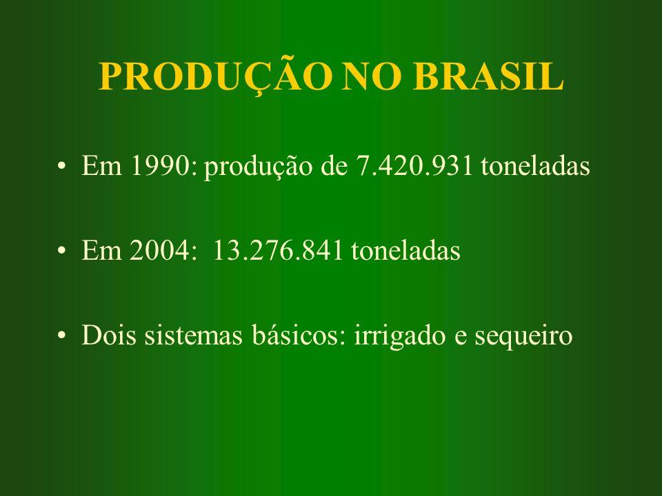 PRODUÇÃO NO BRASIL Em 1990: produção de 7.420.931 toneladas Em 2004: 13.276.841 toneladas Dois sistemas básicos: irrigado e sequeiro