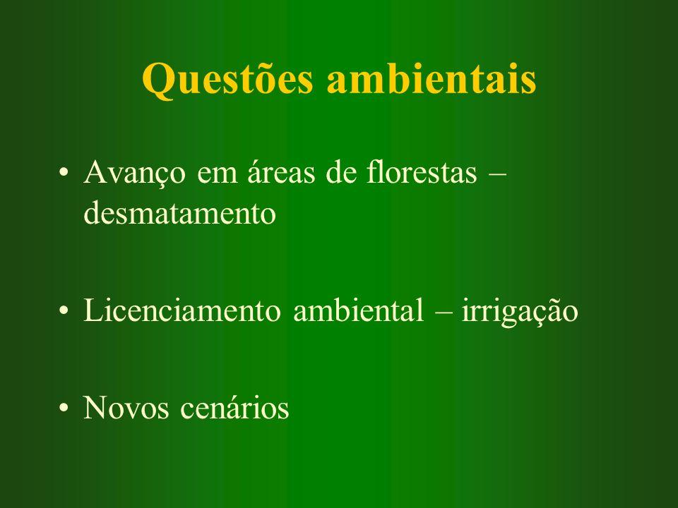 Questões ambientais Avanço em áreas de florestas – desmatamento Licenciamento ambiental – irrigação Novos cenários