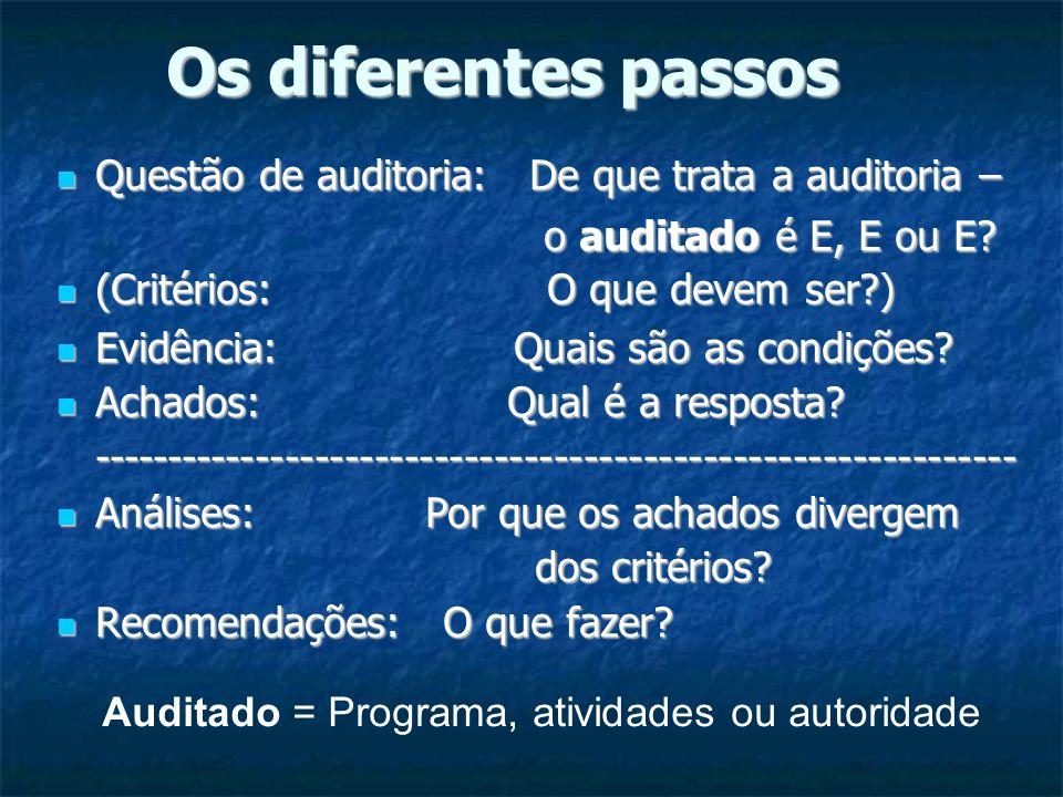 Os diferentes passos Questão de auditoria: De que trata a auditoria – Questão de auditoria: De que trata a auditoria – o auditado é E, E ou E? o audit