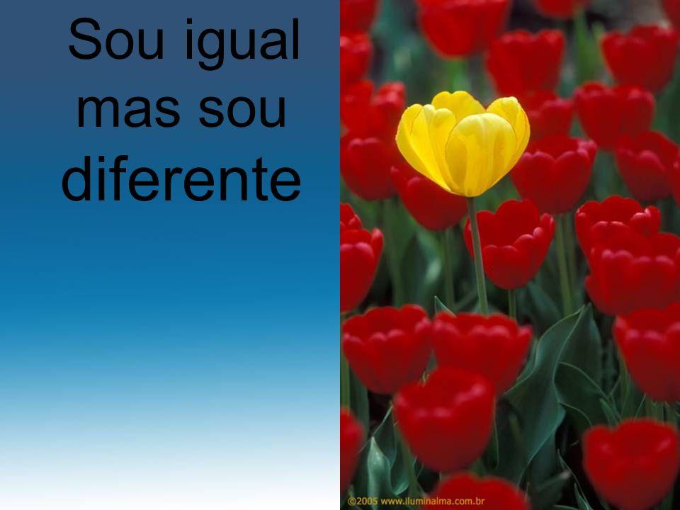 Sou igual mas sou diferente