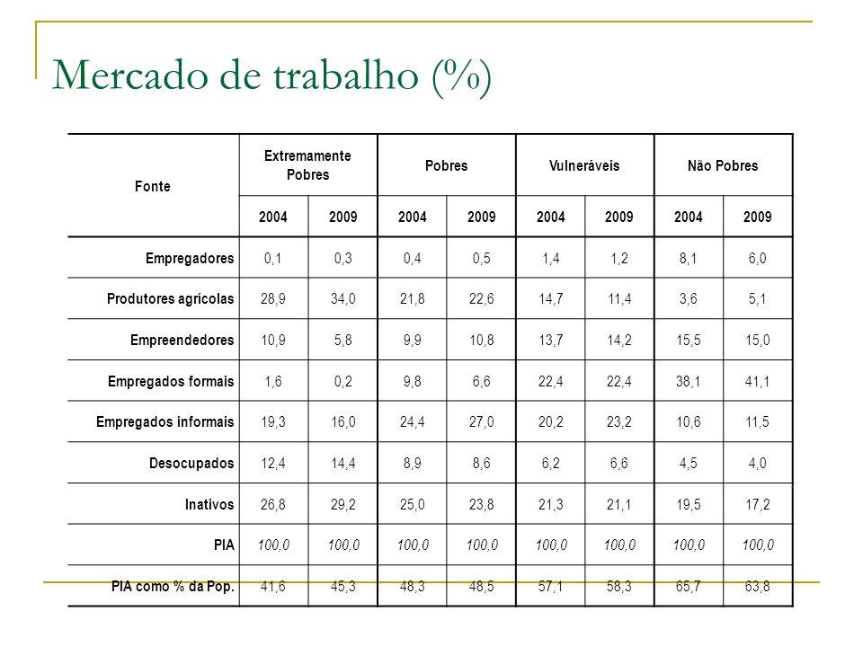 Mercado de trabalho (%) Fonte Extremamente Pobres PobresVulneráveisNão Pobres 20042009200420092004200920042009 Empregadores 0,10,30,40,51,41,28,16,0 P