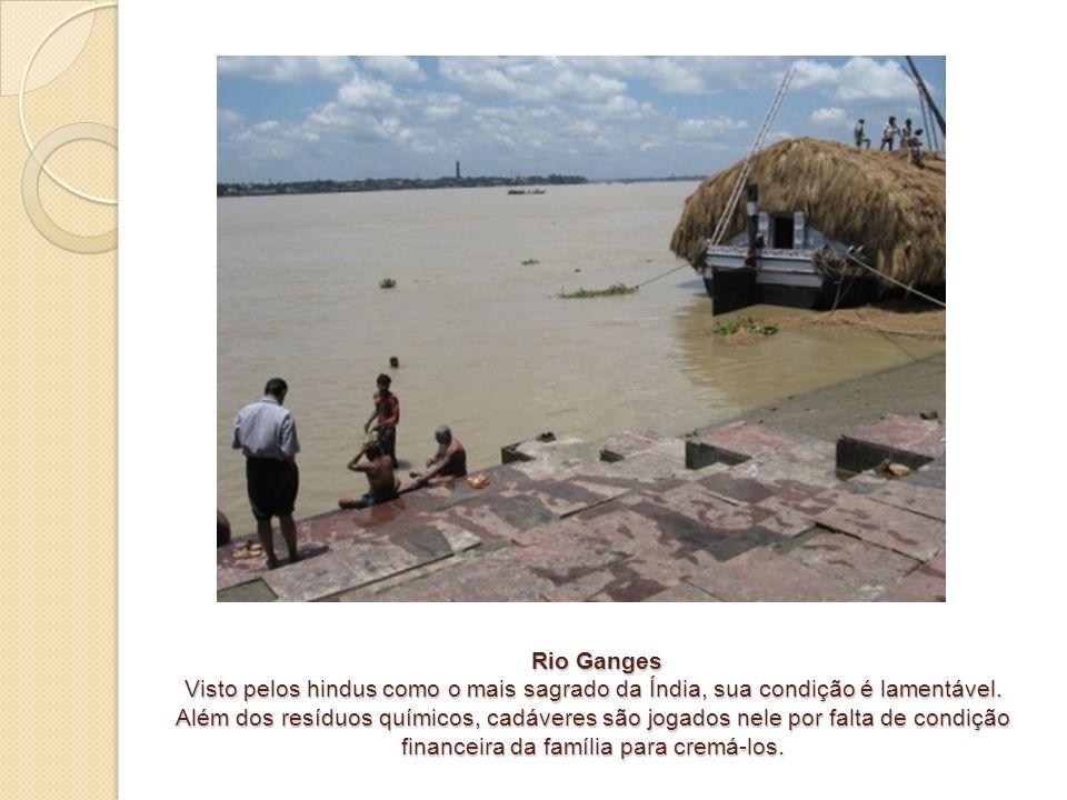 Rio Ganges Visto pelos hindus como o mais sagrado da Índia, sua condição é lamentável. Além dos resíduos químicos, cadáveres são jogados nele por falt