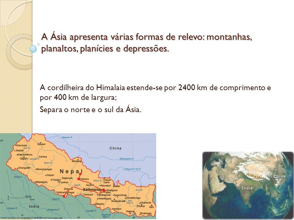 A Ásia apresenta várias formas de relevo: montanhas, planaltos, planícies e depressões. A cordilheira do Himalaia estende-se por 2400 km de compriment