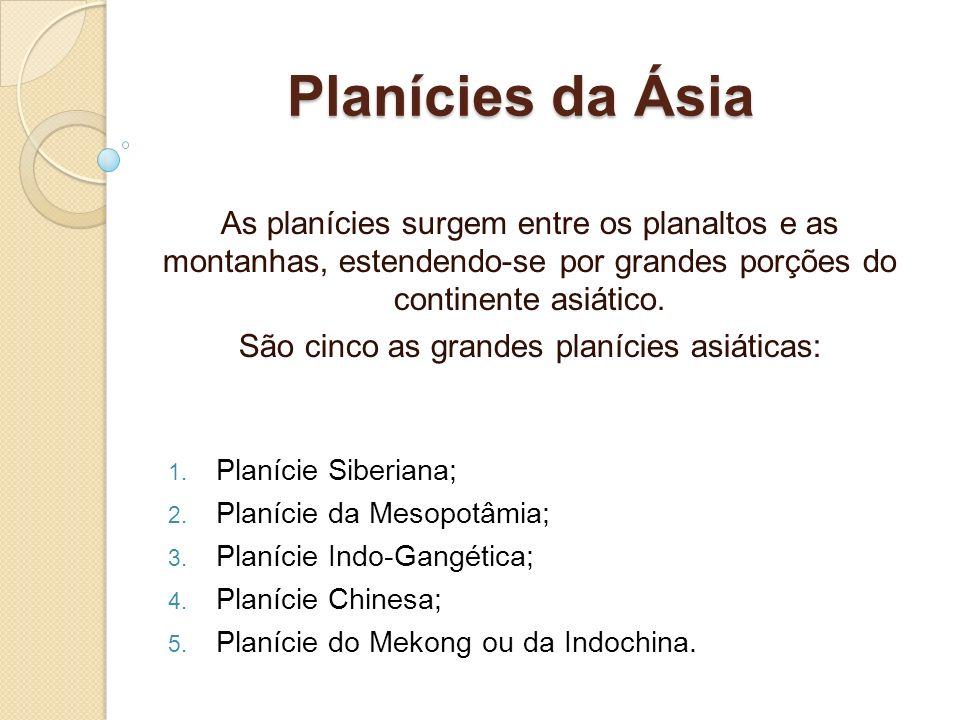 Planícies da Ásia As planícies surgem entre os planaltos e as montanhas, estendendo-se por grandes porções do continente asiático. São cinco as grande