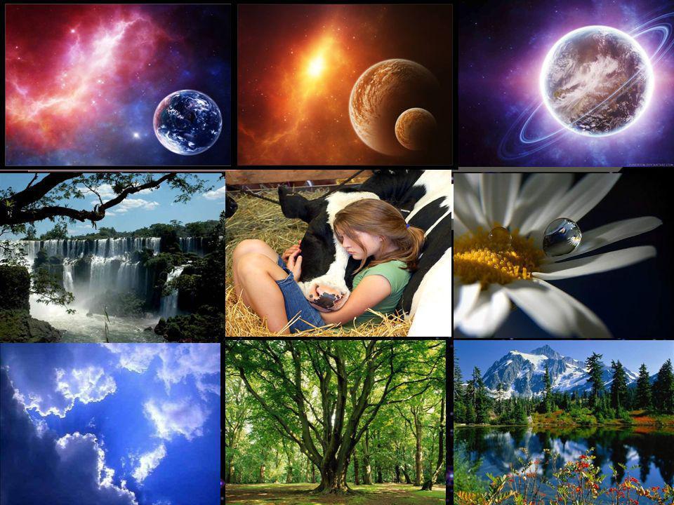 O que é Deus? Pela obra se conhece o autor. OLE - Capítulo I pg. 55 Deus é a inteligência suprema, causa primária de todas as coisas