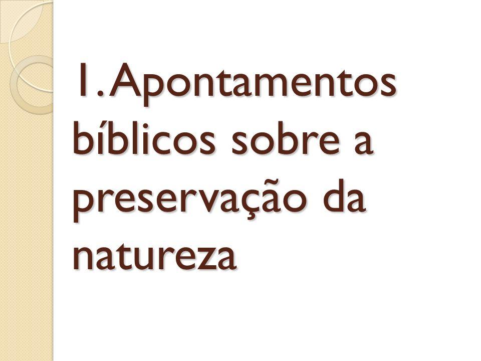 2.1. A abordagem teológica A origem do universo e da vida.