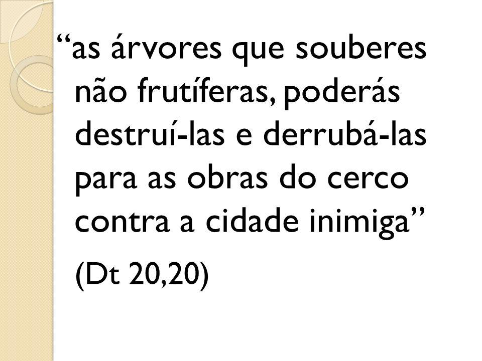 as árvores que souberes não frutíferas, poderás destruí-las e derrubá-las para as obras do cerco contra a cidade inimiga (Dt 20,20)
