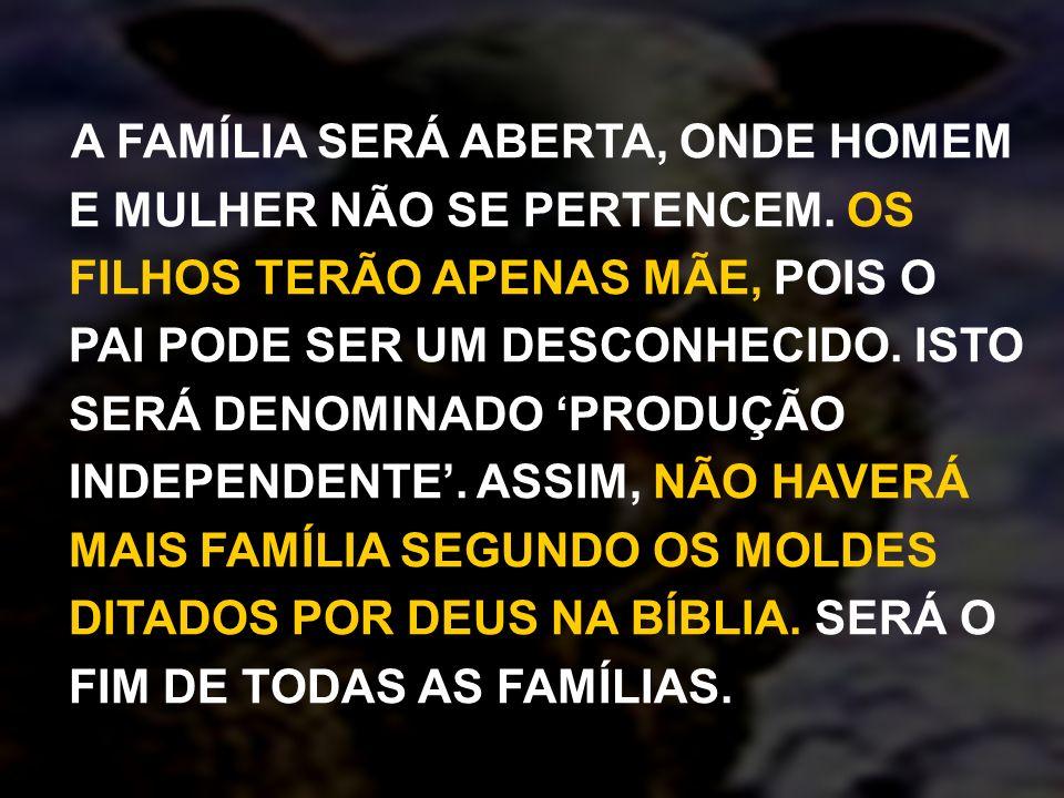 9) QUAL É O PLANO FUNDAMENTAL DA NOVA ERA.