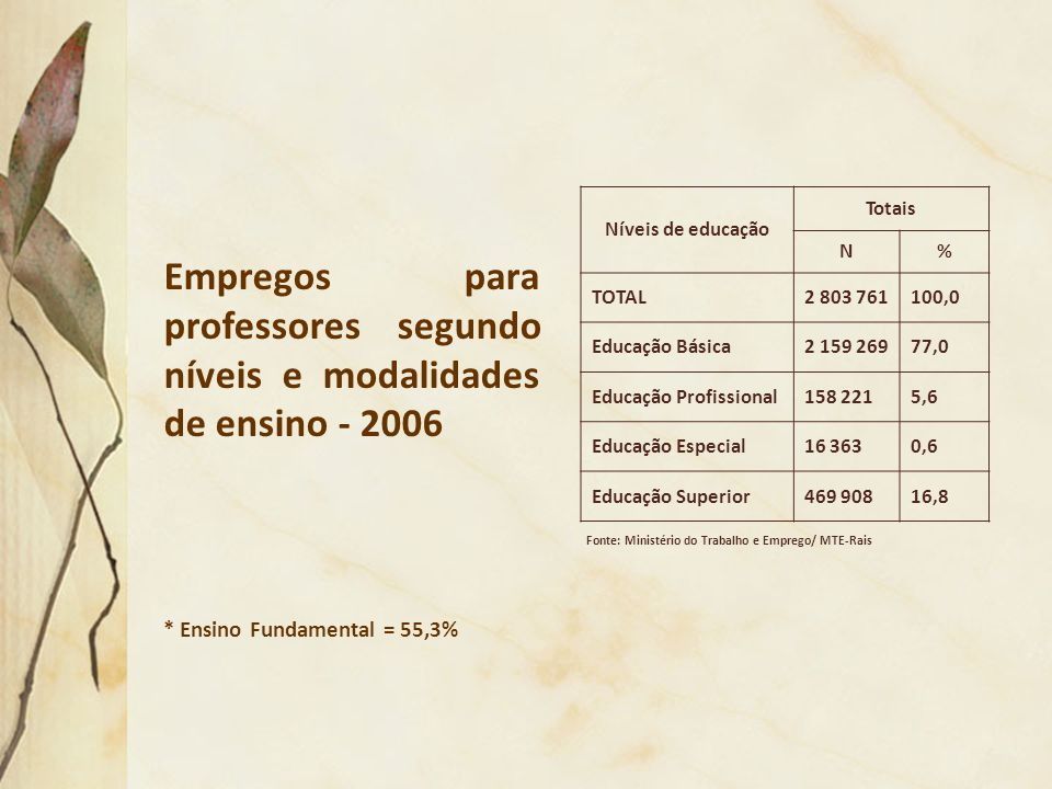 Empregos para professores segundo níveis e modalidades de ensino - 2006 Fonte: Ministério do Trabalho e Emprego/ MTE-Rais * Ensino Fundamental = 55,3%