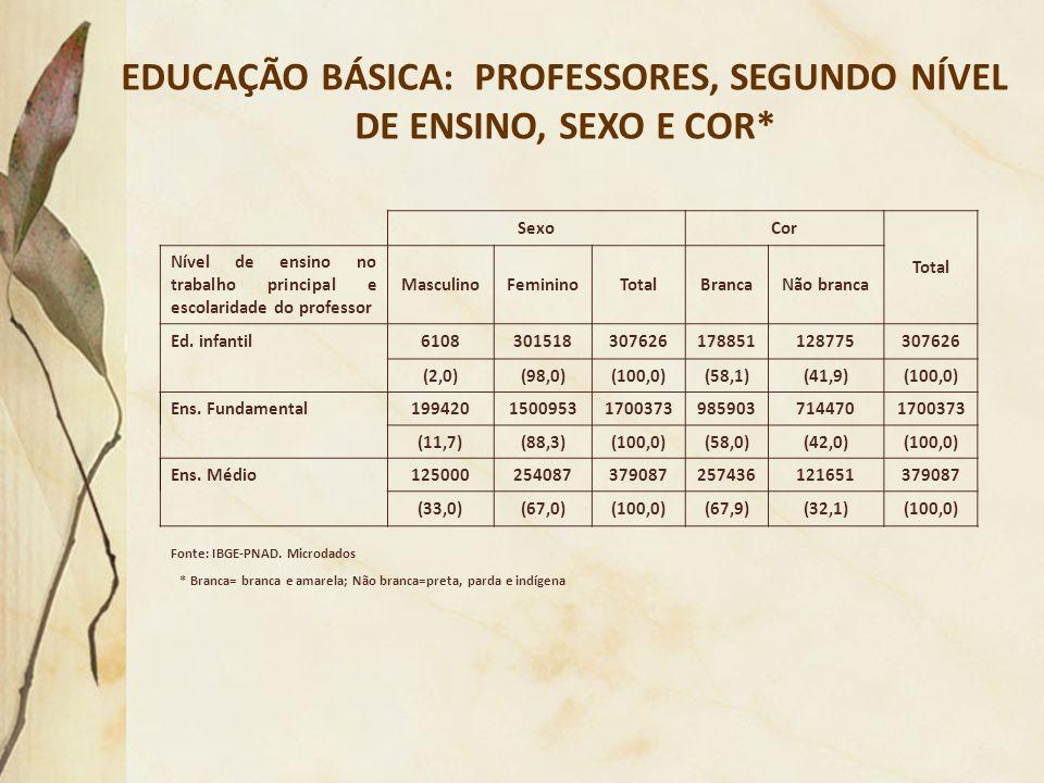 EDUCAÇÃO BÁSICA: PROFESSORES, SEGUNDO NÍVEL DE ENSINO, SEXO E COR* Fonte: IBGE-PNAD. Microdados * Branca= branca e amarela; Não branca=preta, parda e