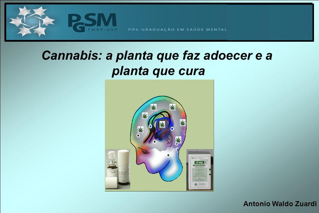 AGUDAMENTE THC : INDUZ SINTOMAS PSICÓTICOS EM VOLUNTÁRIOS SADIOS EXACERBA SINTOMAS PSICÓTICOS EM ESQUIZOFRENICOS