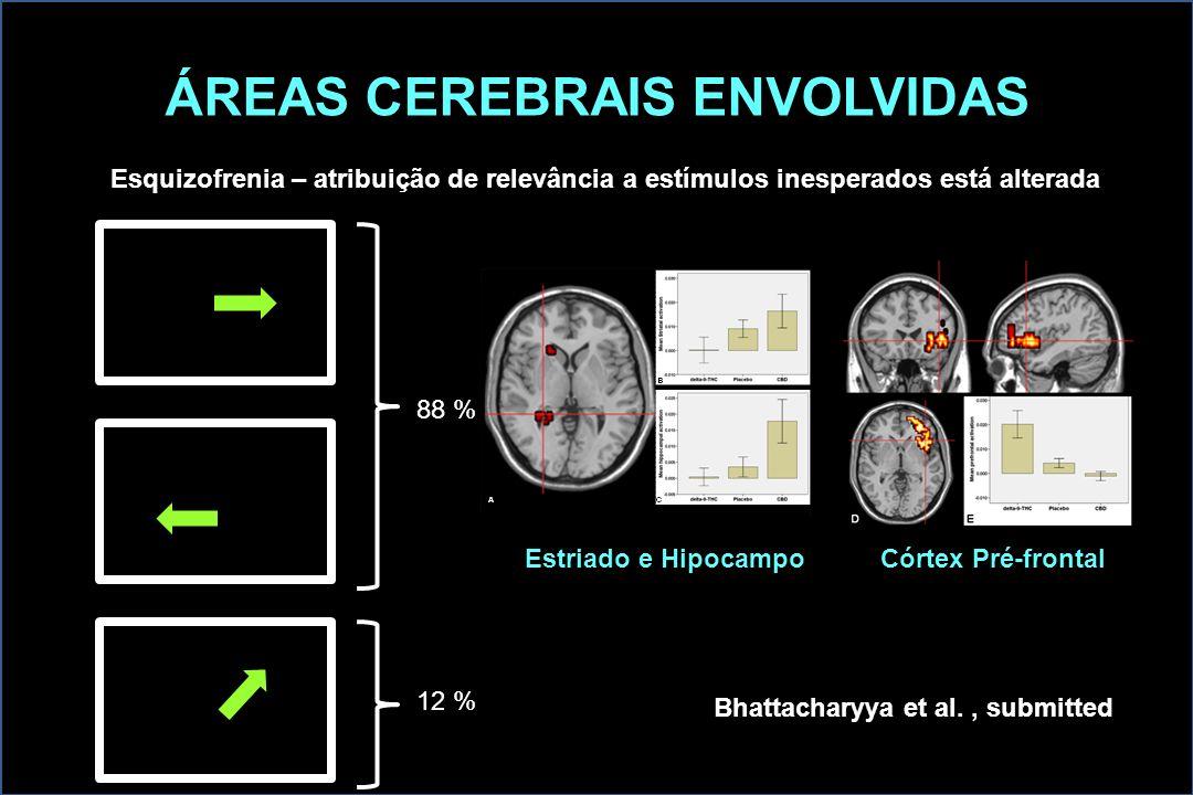 ÁREAS CEREBRAIS ENVOLVIDAS Esquizofrenia – atribuição de relevância a estímulos inesperados está alterada 88 % 12 % Estriado e Hipocampo Córtex Pré-fr