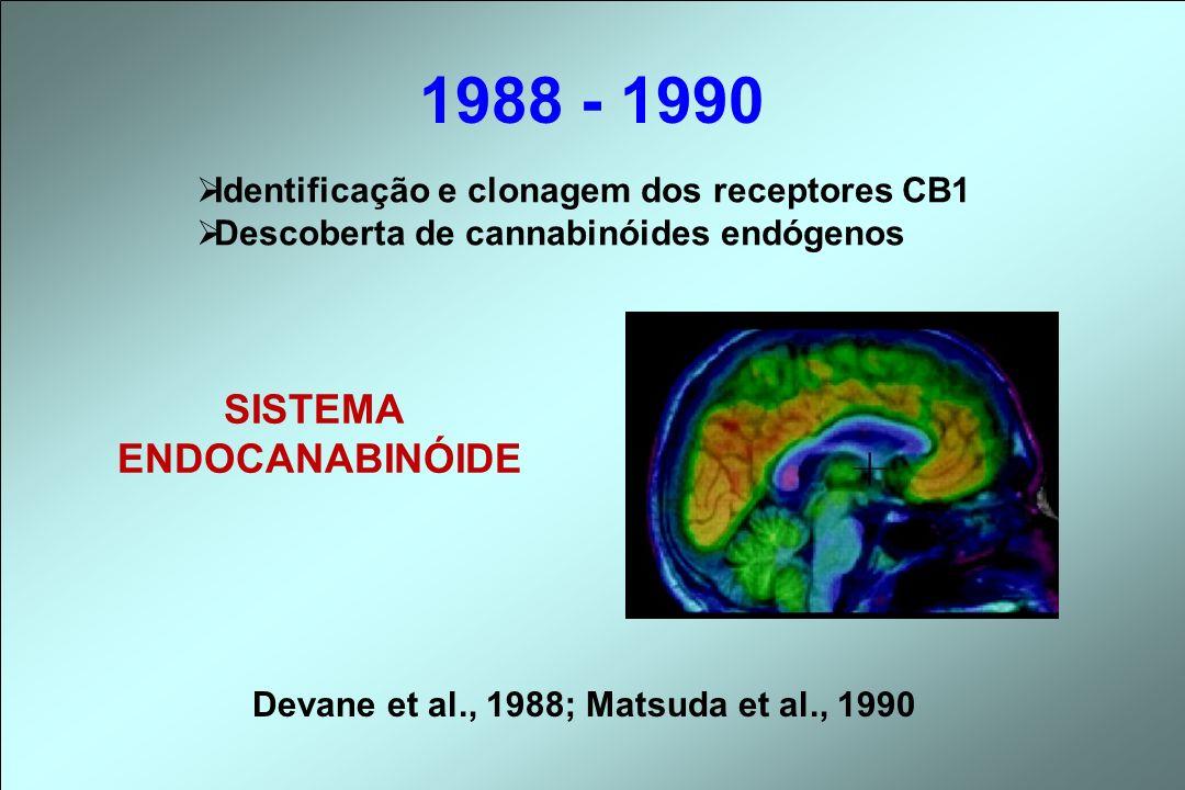 1988 - 1990 Identificação e clonagem dos receptores CB1 Descoberta de cannabinóides endógenos SISTEMA ENDOCANABINÓIDE Devane et al., 1988; Matsuda et