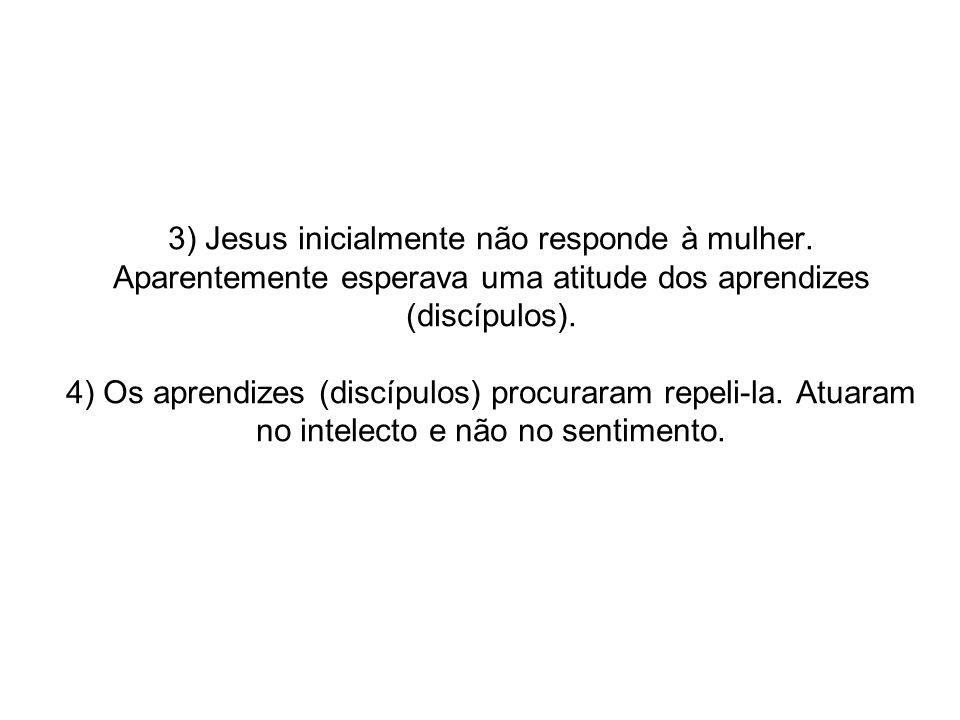 3) Jesus inicialmente não responde à mulher. Aparentemente esperava uma atitude dos aprendizes (discípulos). 4) Os aprendizes (discípulos) procuraram