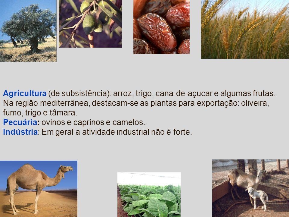 Agricultura (de subsistência): arroz, trigo, cana-de-açucar e algumas frutas. Na região mediterrânea, destacam-se as plantas para exportação: oliveira
