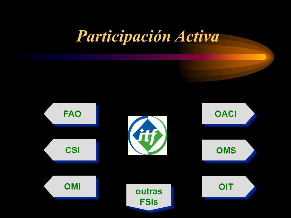 Participación Activa OIT FAO OACI OMI OMS CSI outras FSIs outras FSIs
