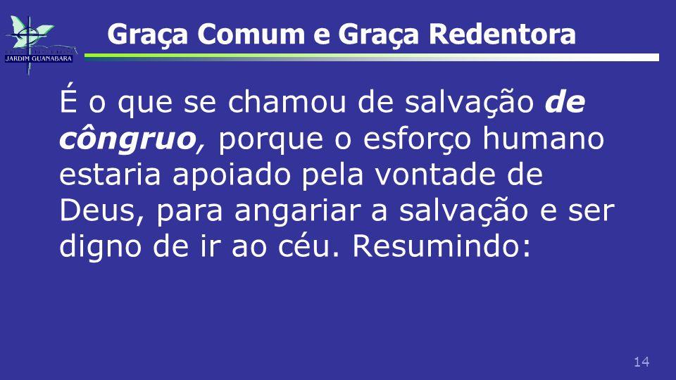 14 Graça Comum e Graça Redentora É o que se chamou de salvação de côngruo, porque o esforço humano estaria apoiado pela vontade de Deus, para angariar