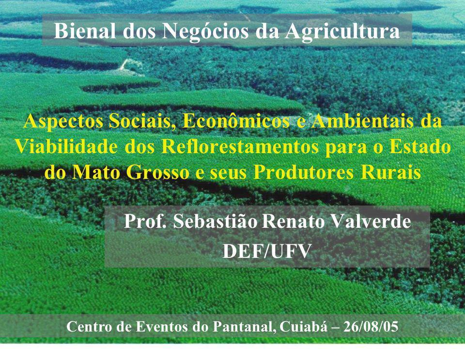 Aspectos Sociais, Econômicos e Ambientais da Viabilidade dos Reflorestamentos para o Estado do Mato Grosso e seus Produtores Rurais Prof. Sebastião Re