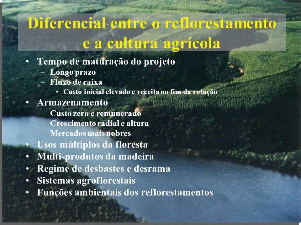 Diferencial entre o reflorestamento e a cultura agrícola Tempo de maturação do projeto –Longo prazo –Fluxo de caixa Custo inicial elevado e receita no