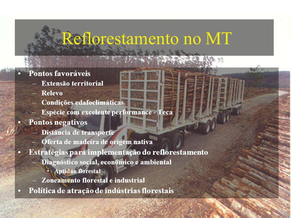Reflorestamento no MT Pontos favoráveis –Extensão territorial –Relevo –Condições edafoclimáticas –Espécie com excelente performance - Teca Pontos nega