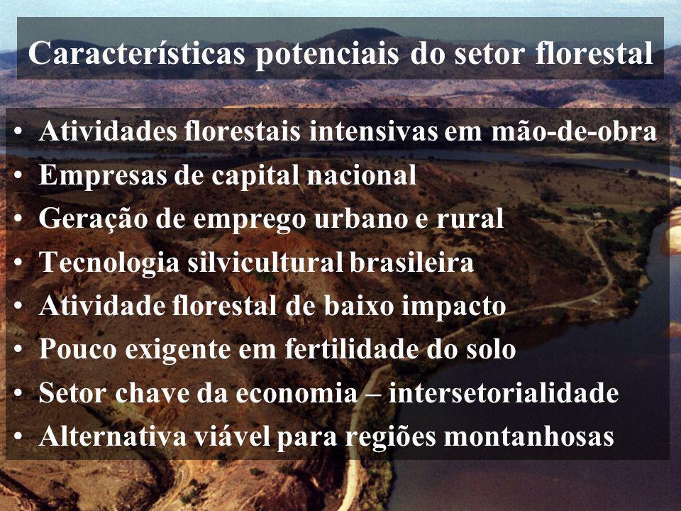 Características potenciais do setor florestal Atividades florestais intensivas em mão-de-obra Empresas de capital nacional Geração de emprego urbano e