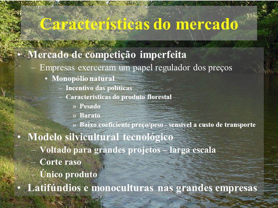 Características do mercado Mercado de competição imperfeita –Empresas exerceram um papel regulador dos preços Monopólio natural –Incentivo das polític