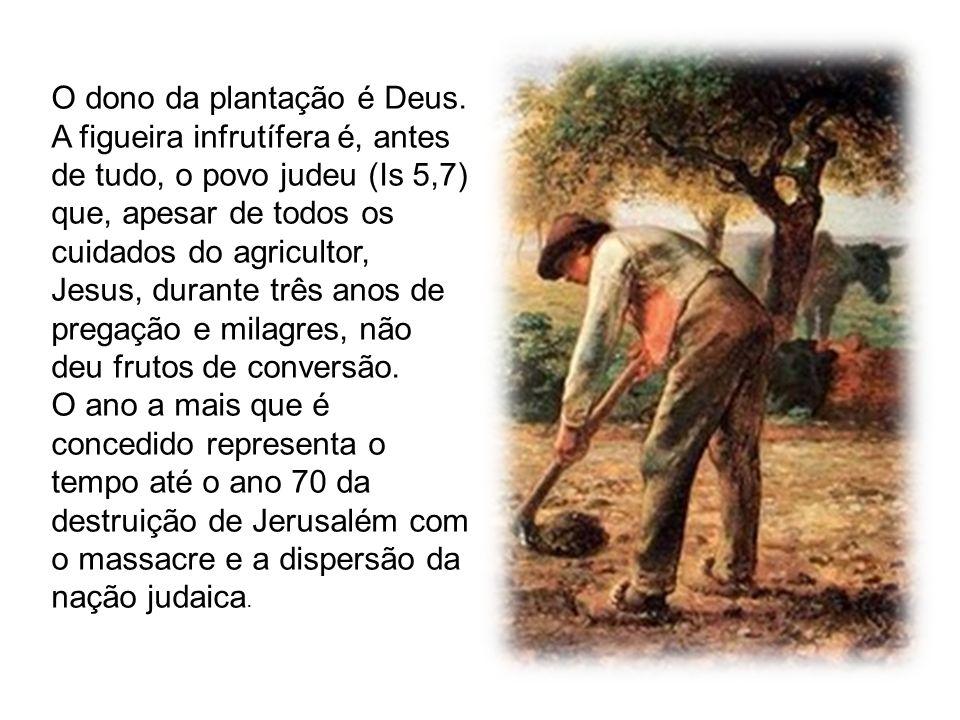 O dono da plantação é Deus. A figueira infrutífera é, antes de tudo, o povo judeu (Is 5,7) que, apesar de todos os cuidados do agricultor, Jesus, dura