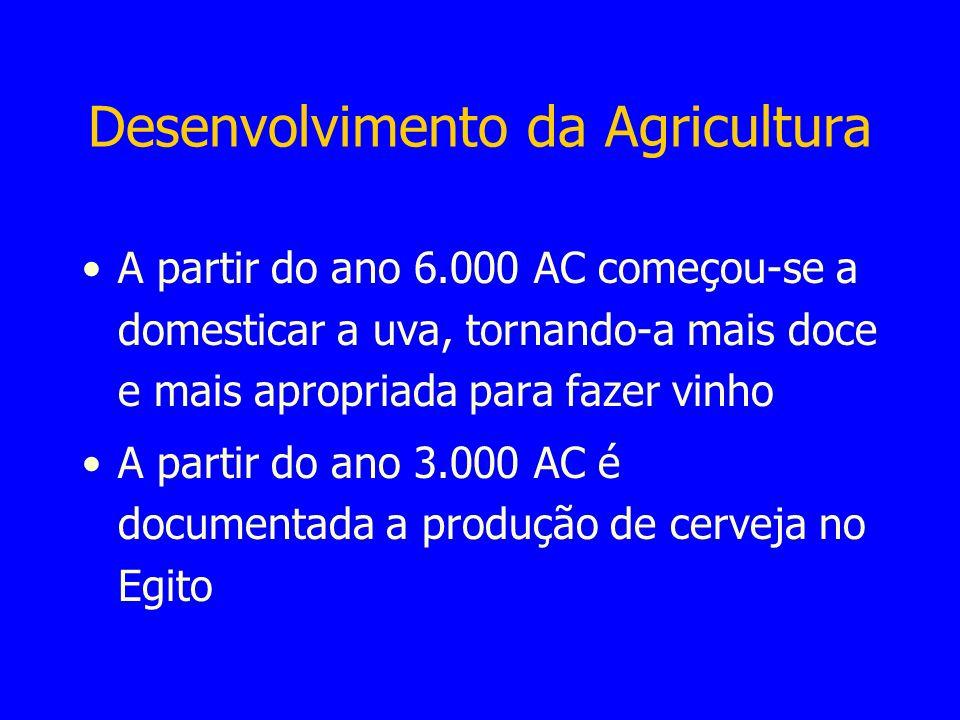 Desenvolvimento da Agricultura A partir do ano 6.000 AC começou-se a domesticar a uva, tornando-a mais doce e mais apropriada para fazer vinho A parti