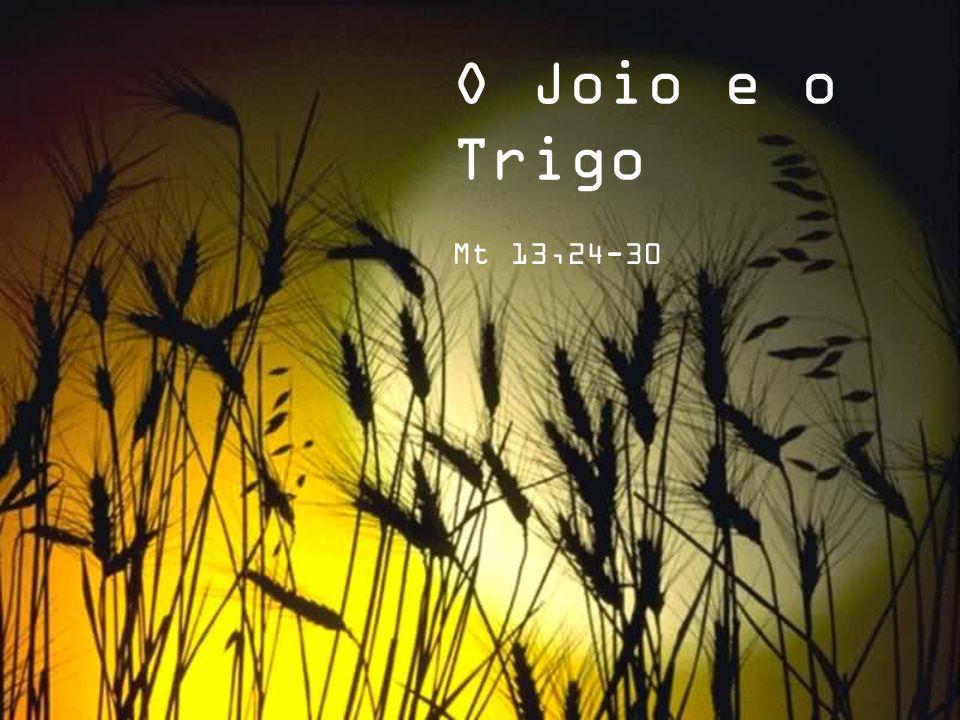 Texto – Pe. Jair de Freitas - Apontamentos Imagens – Internet Formatação – I.M.Eunice Wolff