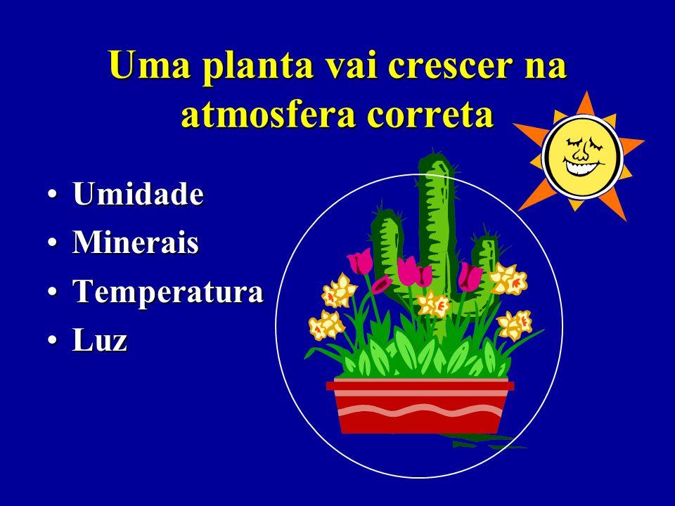 O crescimento acontece porque há vida 1.Há o ambiente correto – atmosferas – para o crescimento acontecer 2.Faça com que a resistência do ambiente sej